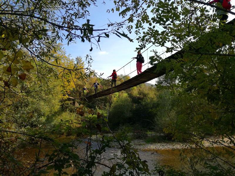 Viseći most, Sasca Montana