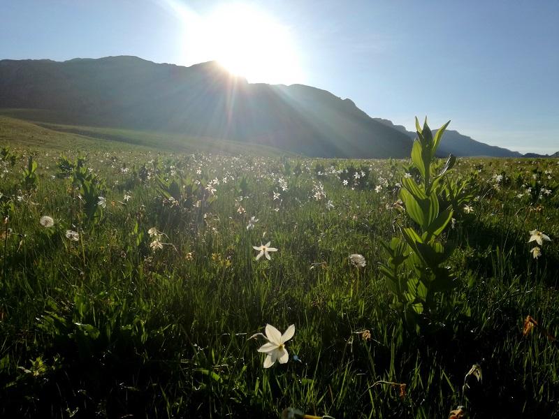 Moracke planine Crna Gora